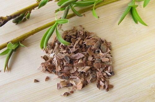 Chiết xuất vỏ cây liễu (Willow Bark extract)